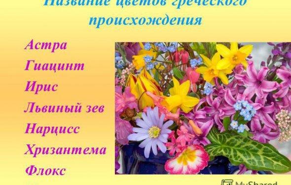 2 Название цветов греческого